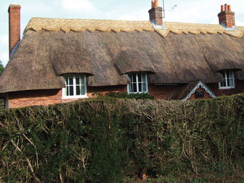 wessex-thatchers-home